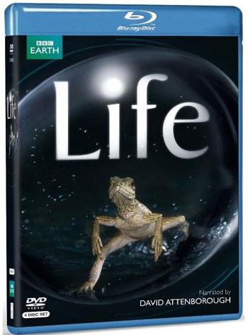 مجموعه حیات وحش بی نظیر ( حیات- LIFE)