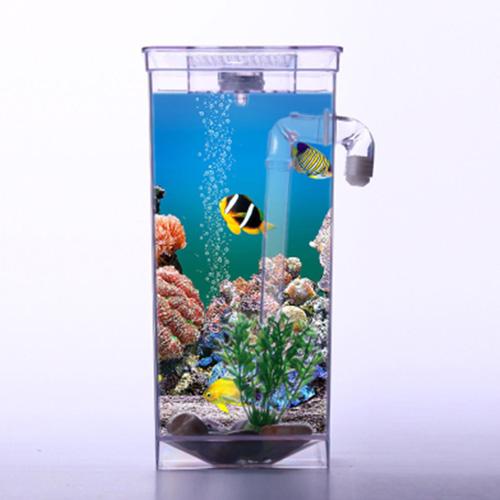 funfish-7